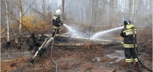 площадь пожаров